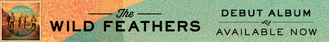 wild feathers banner